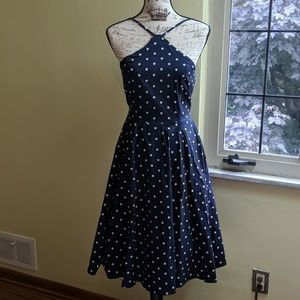 Venus Blue and White Polka Dot Dress